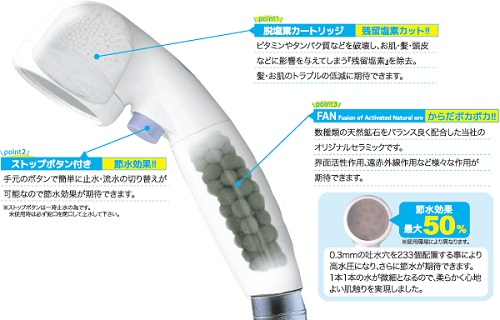 ion-s